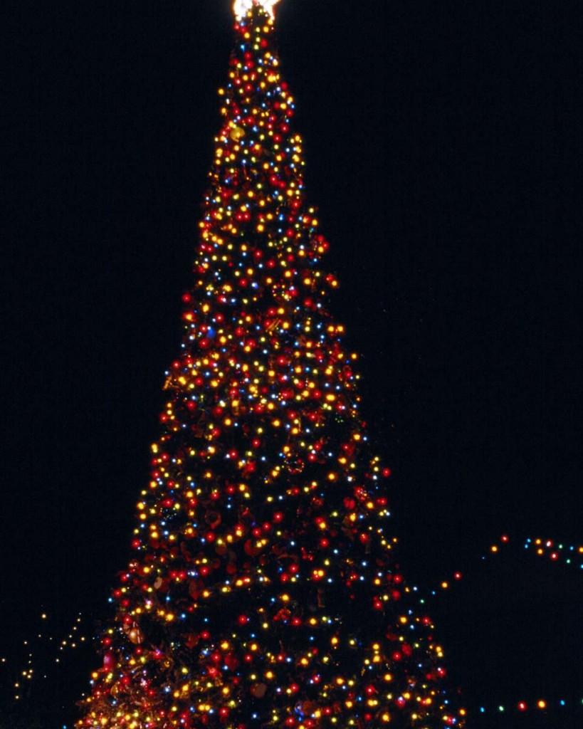 Top 3 des destinations pour les fêtes de fin d'année