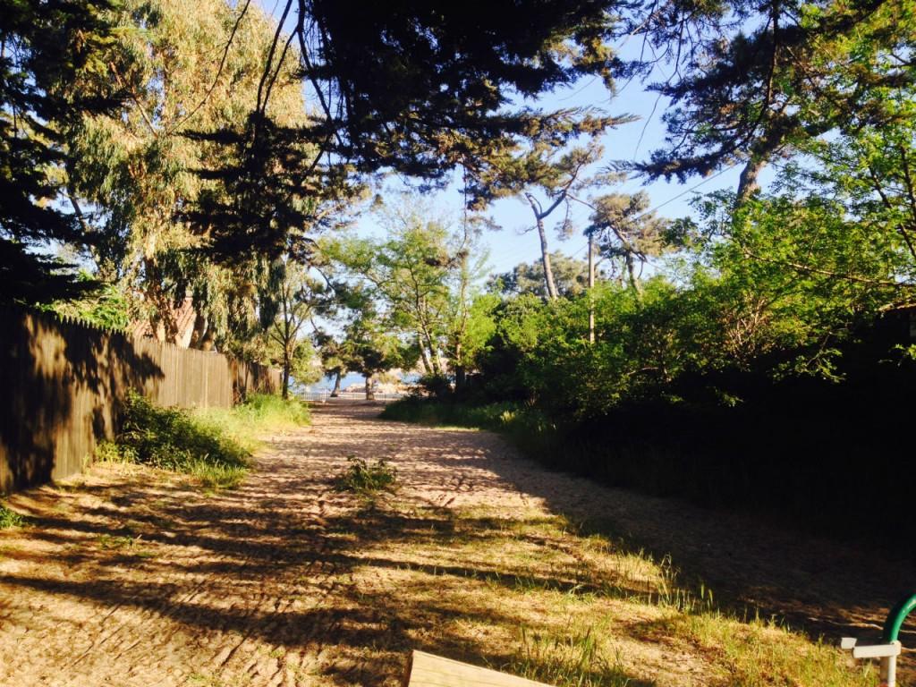 44 hectares chemin ensoleillé