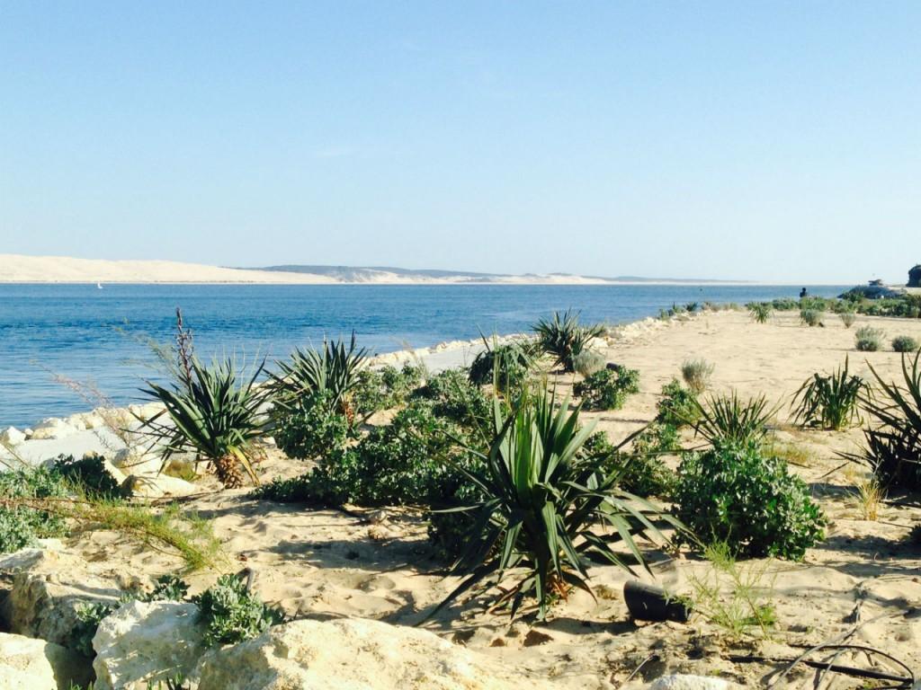 Voyage au Cap Ferret : presqu' île reposante riche en découvertes